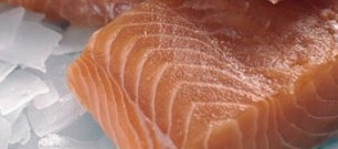 salmon_filets (1)